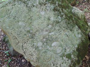 písaný kameň vylety bratislava